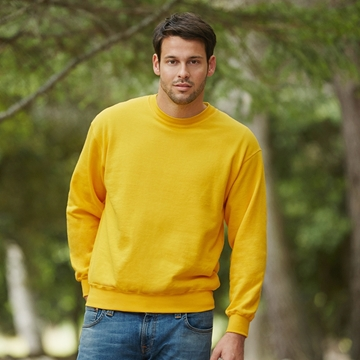 Picture of Classic 80/20 set-in sweatshirt
